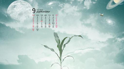 2013年风景九月份高清日历桌面壁纸,美丽的自然景色,绿色唯美的玉米,粗糙的绳子绑着木桩,白色的向日葵等等唯美的景色,给人一种清爽的感觉,如果你喜欢这喜欢这些壁纸,那就赶紧到美桌网下载,记得分享给你的好朋友!